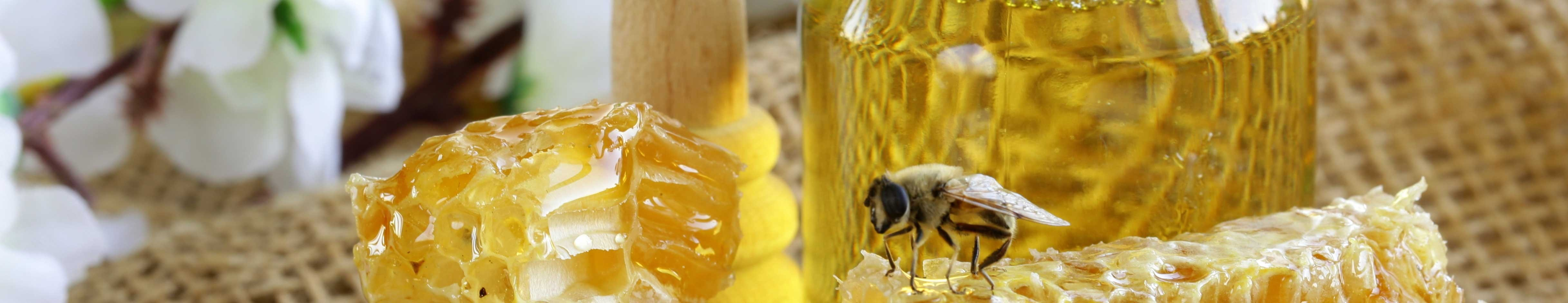elite_alternatives_honey_bee_4868x940